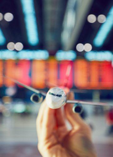 Airline Consultation